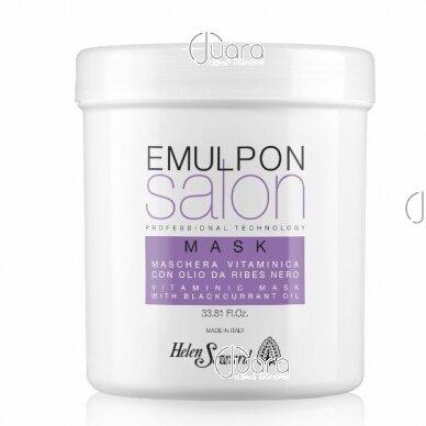 Helen Seward Emulpon kaukė dažytiems plaukams su vaisių ekstraktais 2
