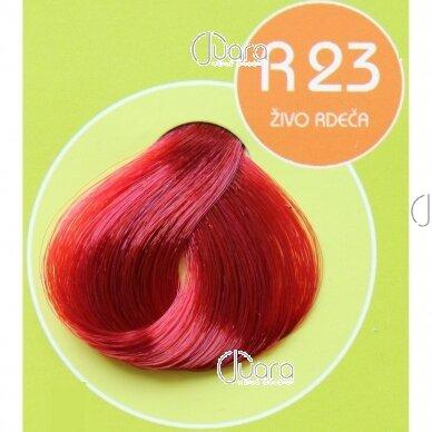 Martis Respect ilgalaikiai plaukų dažai Nr.23 3