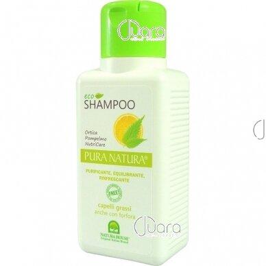 Natura House šampūnas riebiems, pleiskanotiems plaukams, 250ml
